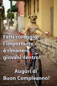 Un cane su una bicicletta - Immagini di buon compleanno, le più simpatiche da scaricare gratis