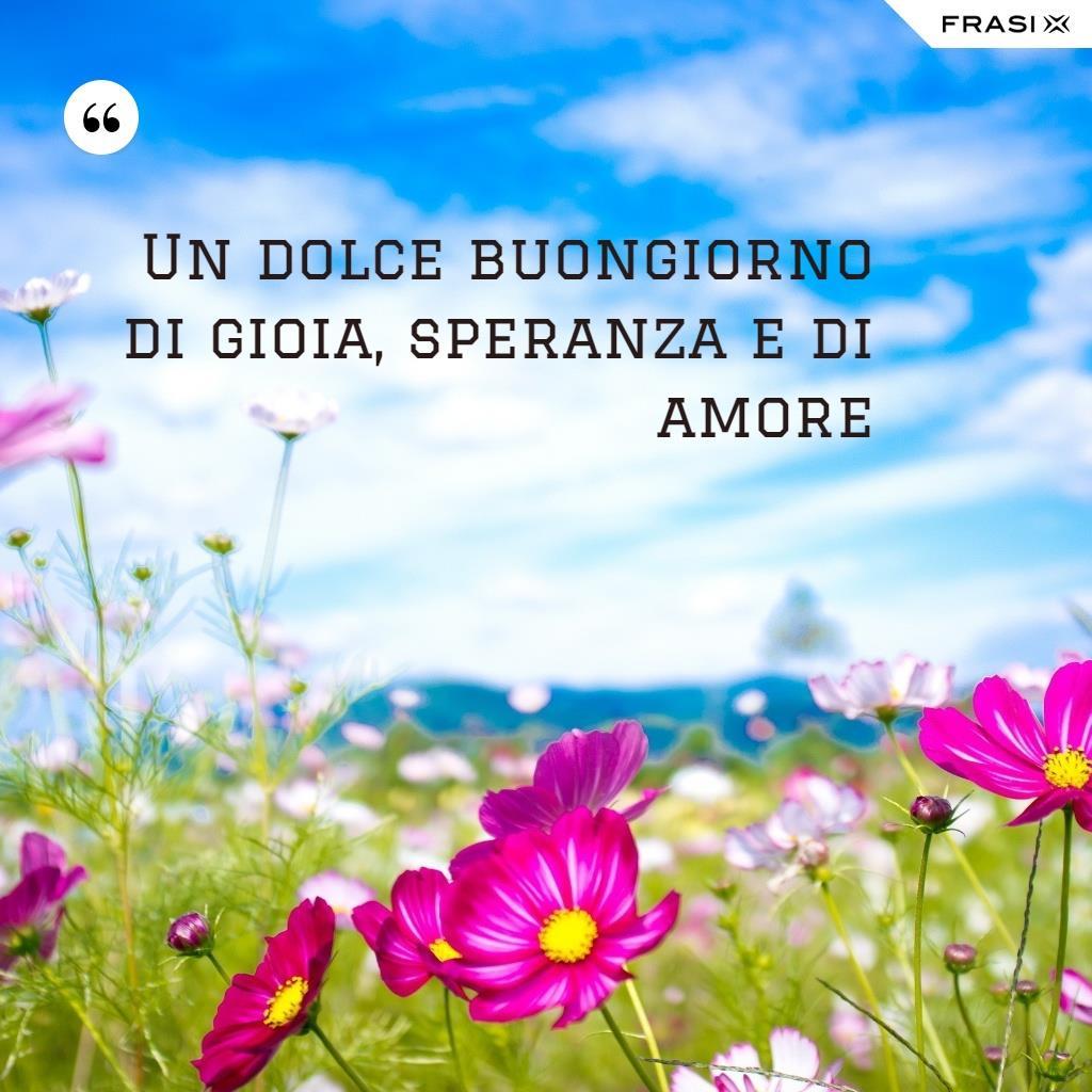 Campo di fiori con citazione Un dolce buongiorno pieno di gioia, speranza e amore