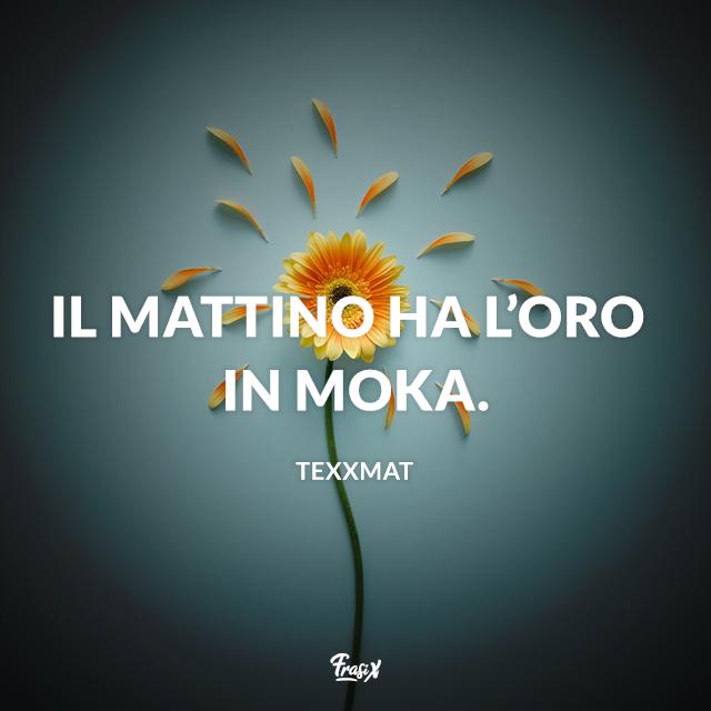 Immagine con fiore e frase Il mattino ha l'oro in moka.