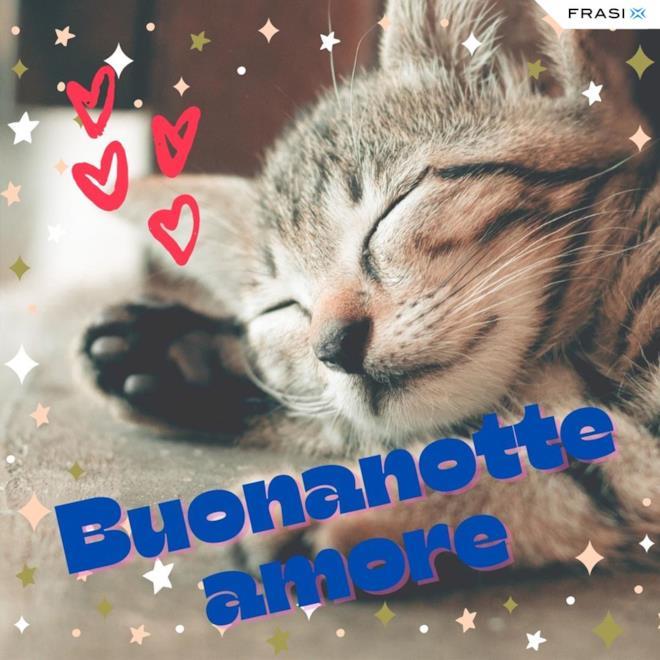 Immagine con gattino che dorme e frase Buonanotte amore