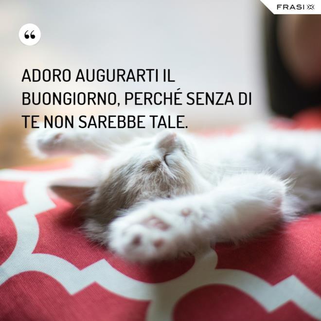 Immagini di buongiorno gattino