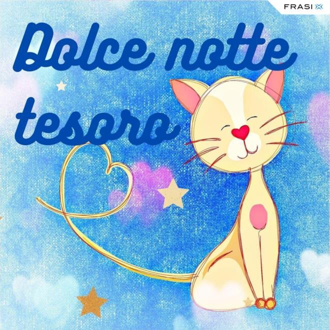 Immagine con gattino e scritta Dolce notte tesoro