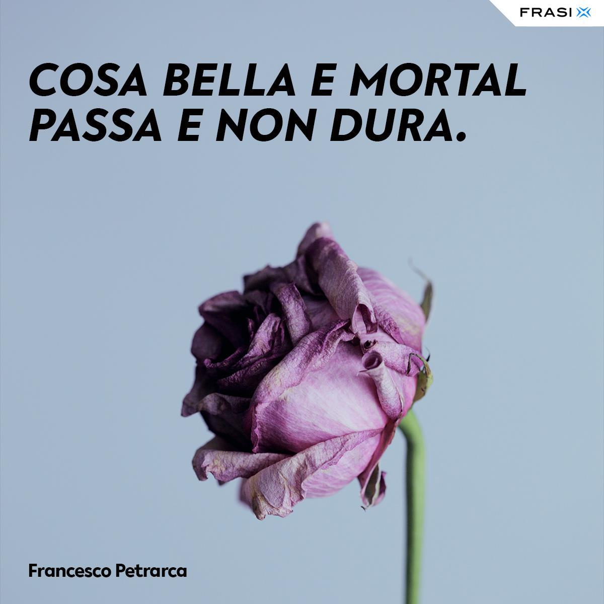 Frasi sul tempo che passa di Francesco Petrarca