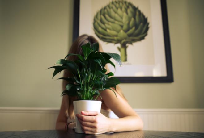 Donna con pianta in vaso che copre viso