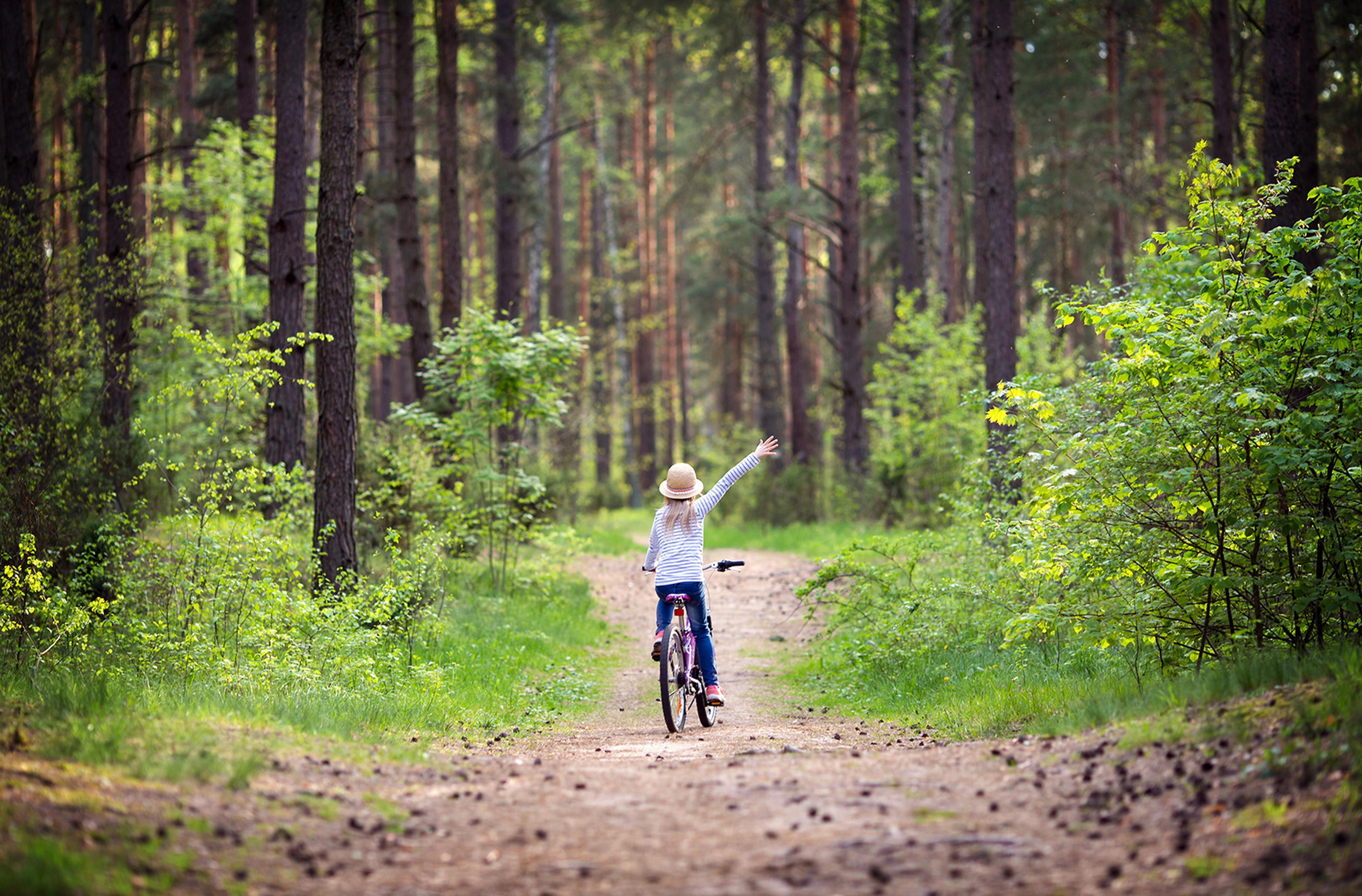 Copertina Frasi bicicletta