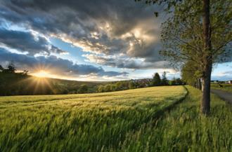 Copertina Frasi sull'agricoltura
