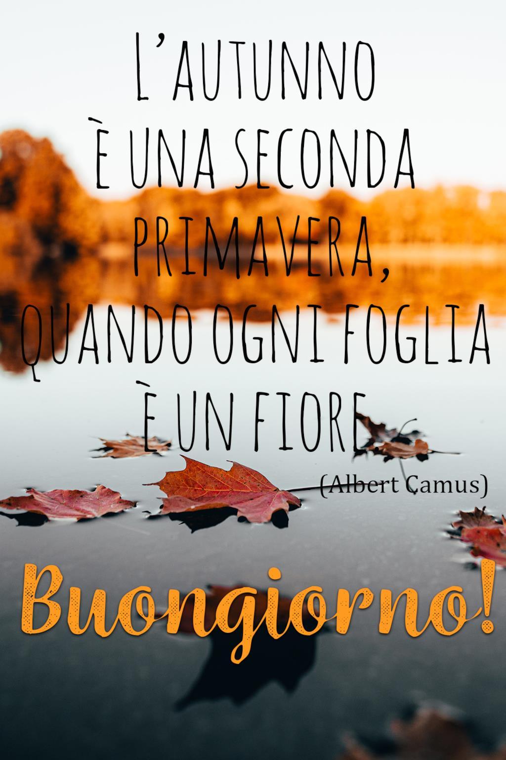 Buon giorno autunno immagini e frasi