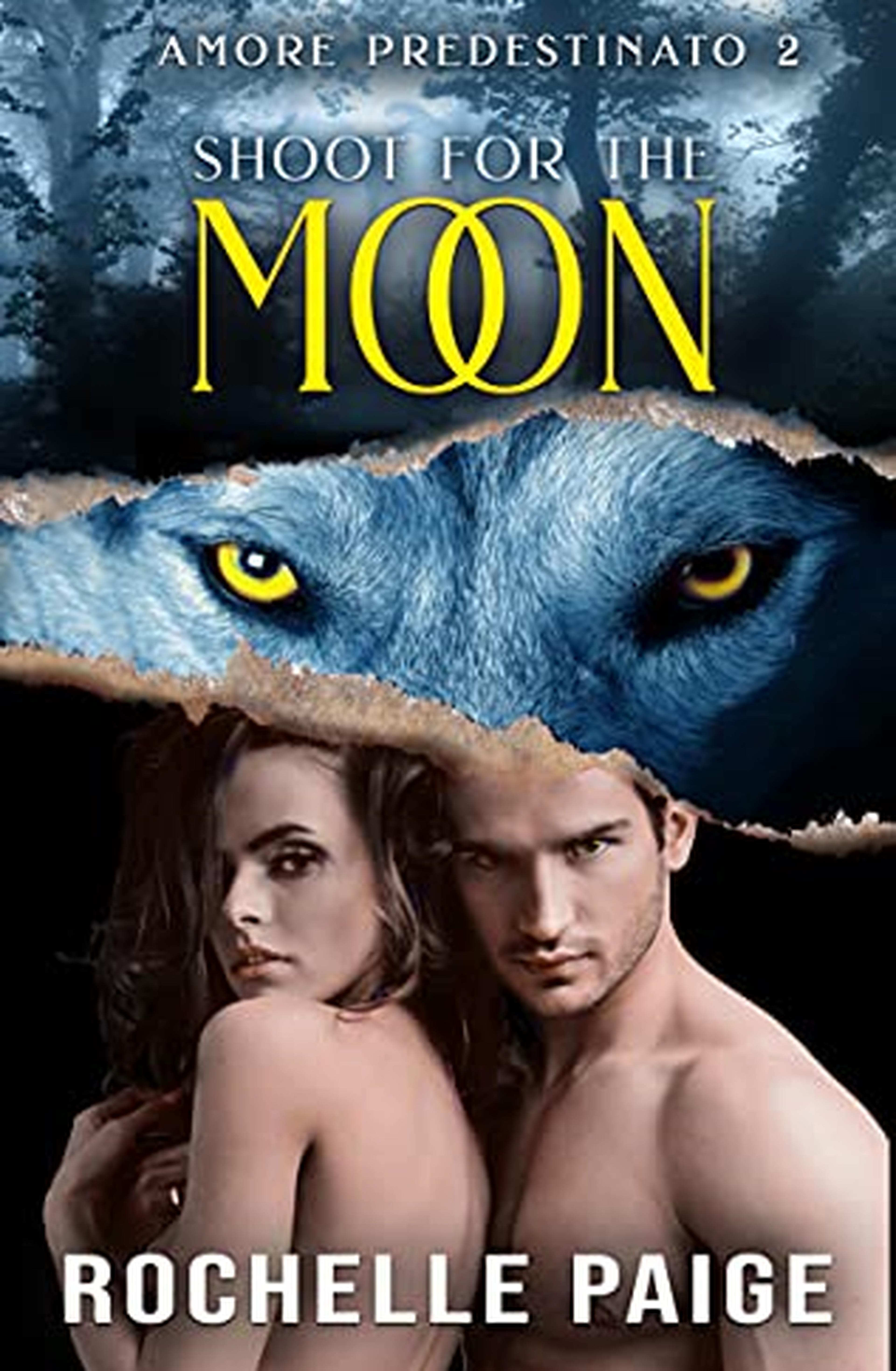 Shoot for the Moon (Amore Predestinato Vol. 2)