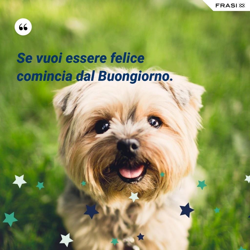 Immagine con cagnolino e frase buongiorno Se vuoi essere felice comincia dal Buongiorno!