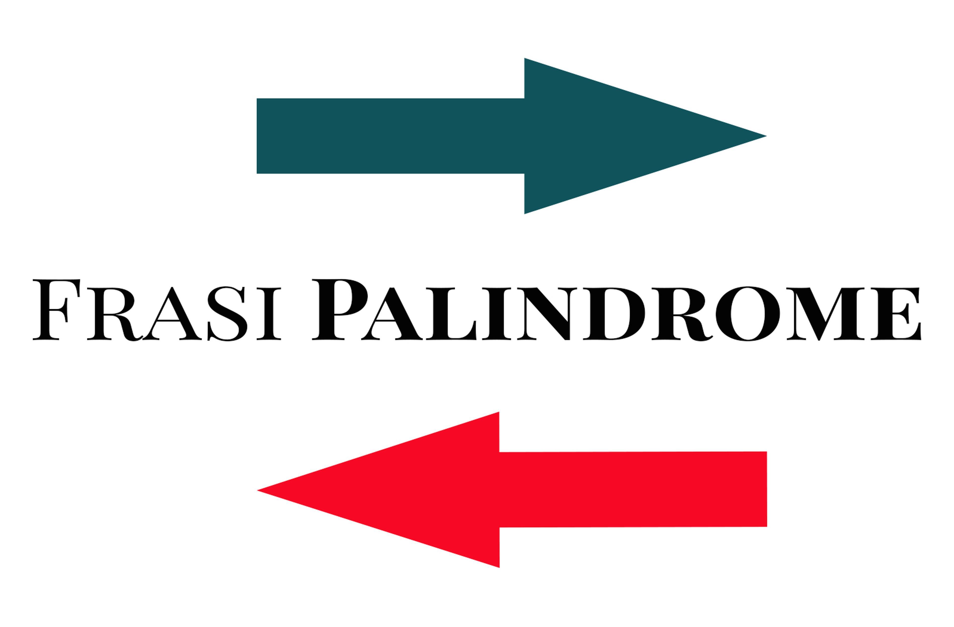 Copertina Frasi palindrome
