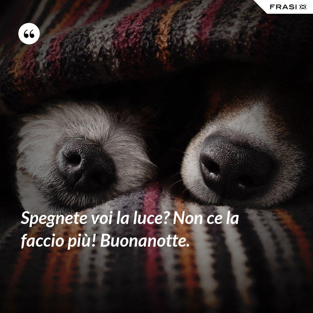 Buonanotte con cagnolini e frase divertente