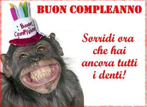Una scimmia che ride - Immagini di buon compleanno, le più simpatiche da scaricare gratis
