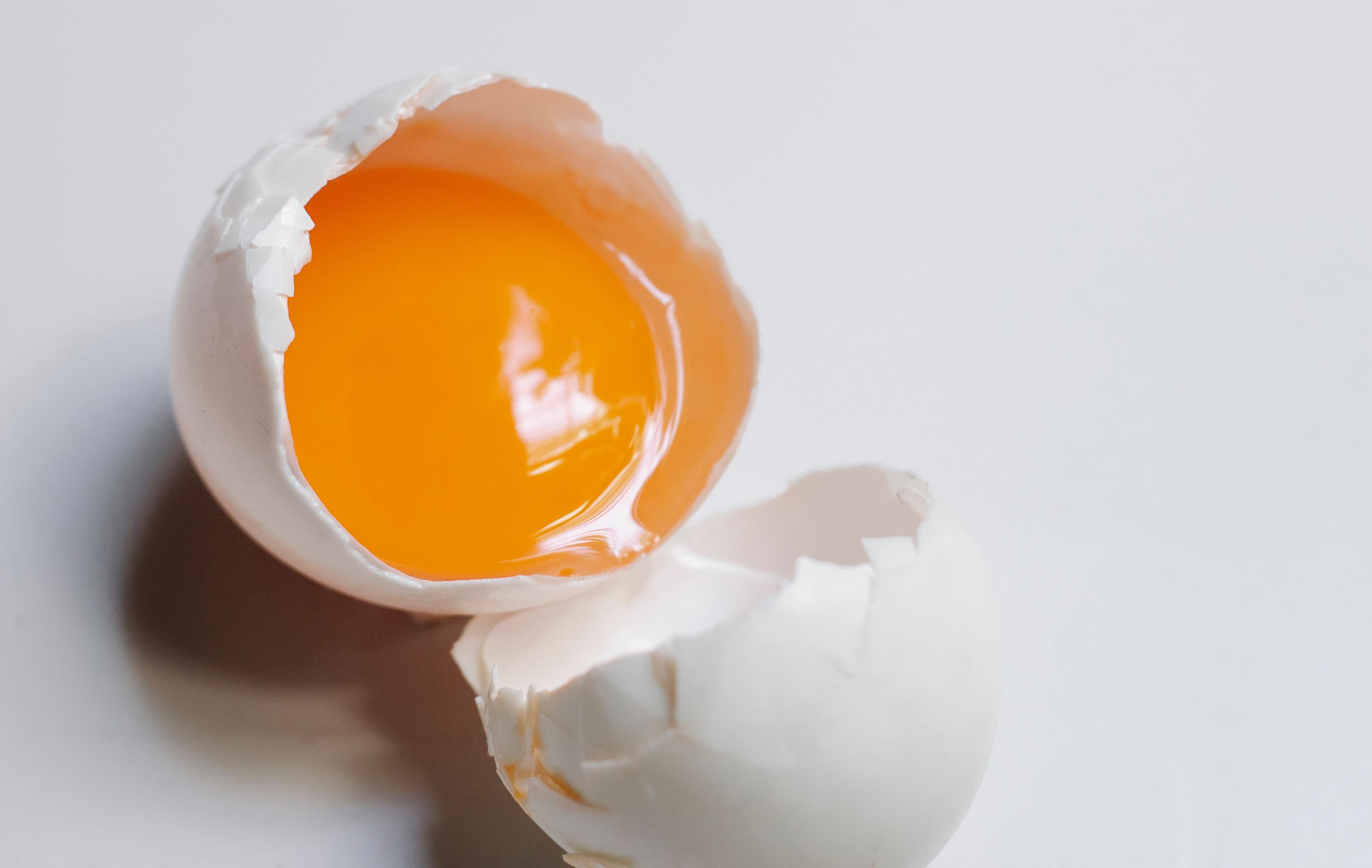 Uovo contiene vitamina D
