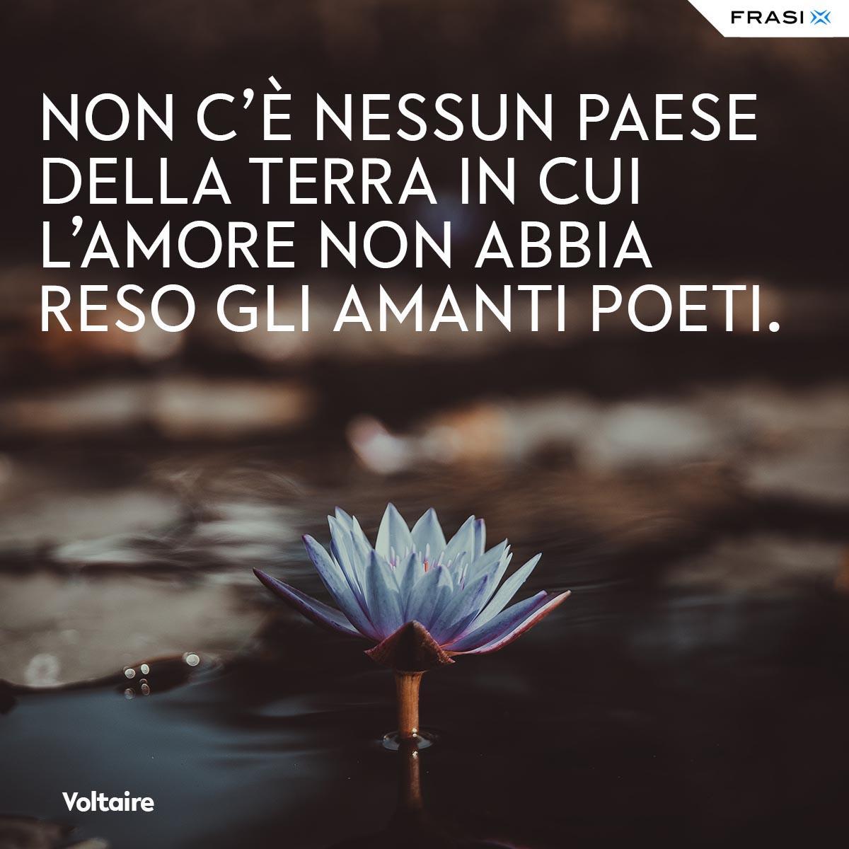 Frasi tumblr Voltaire