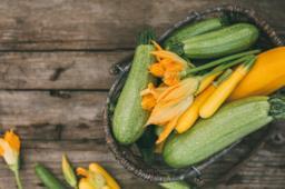 Come cucinare in modo sano e gustoso le zucchine