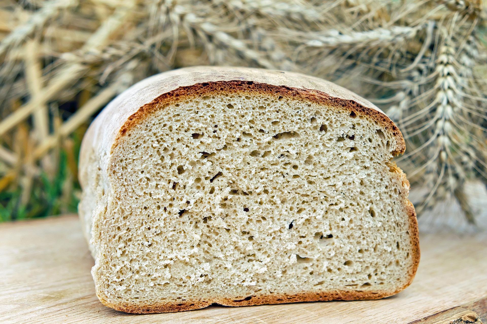 Pezzo di pane per Dieta Dukan