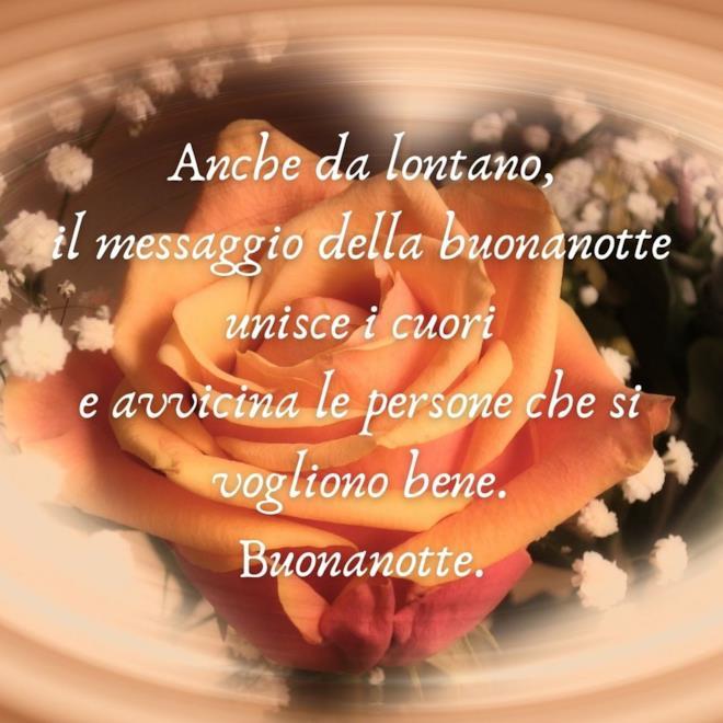 Immagine rosa e citazione della buonanotte