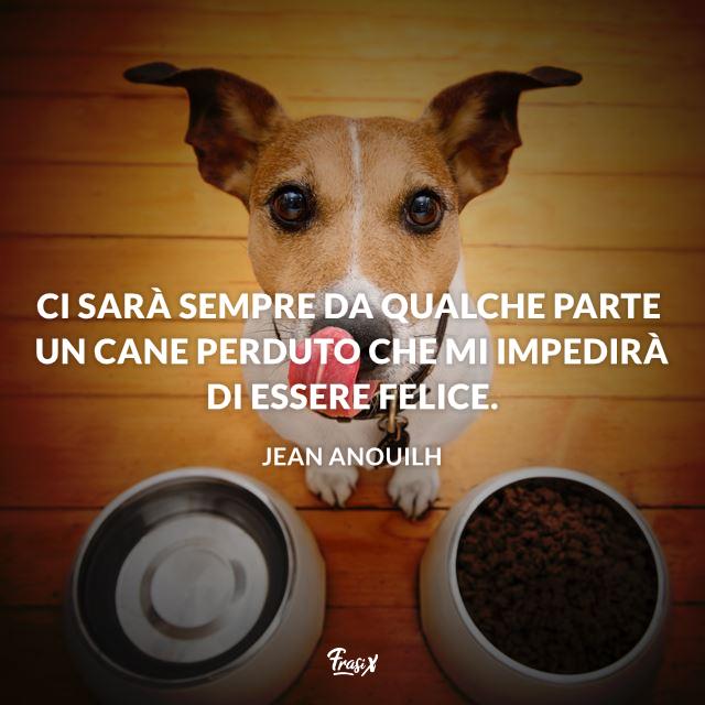 Frasi e immagini sui cani