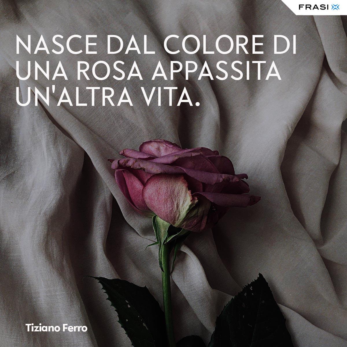 Frasi tumblr Tiziano Ferro