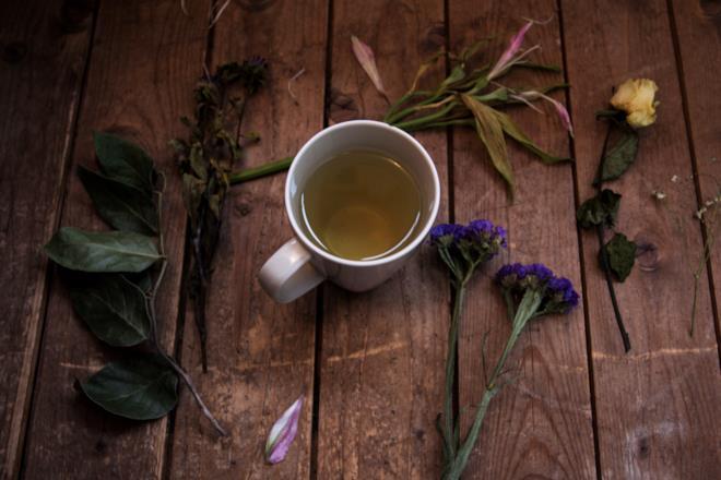 Tè verde in tazzina e piante